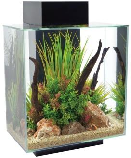 fluval edge 46 aqarium